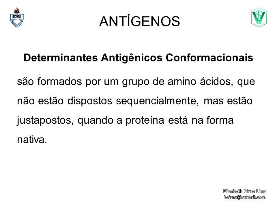Determinantes Antigênicos Conformacionais