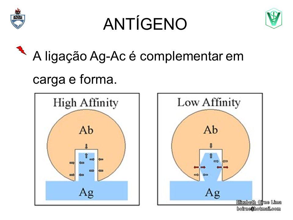 A ligação Ag-Ac é complementar em carga e forma.