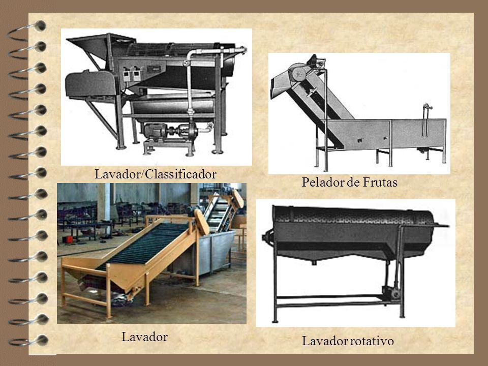 Lavador/Classificador