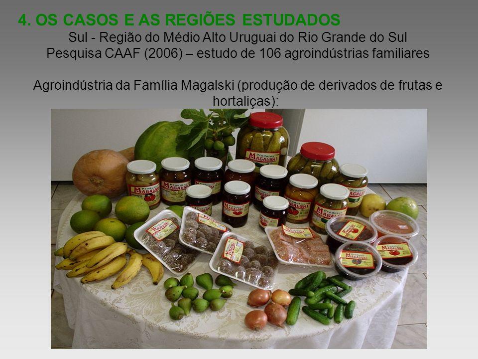 4. OS CASOS E AS REGIÕES ESTUDADOS