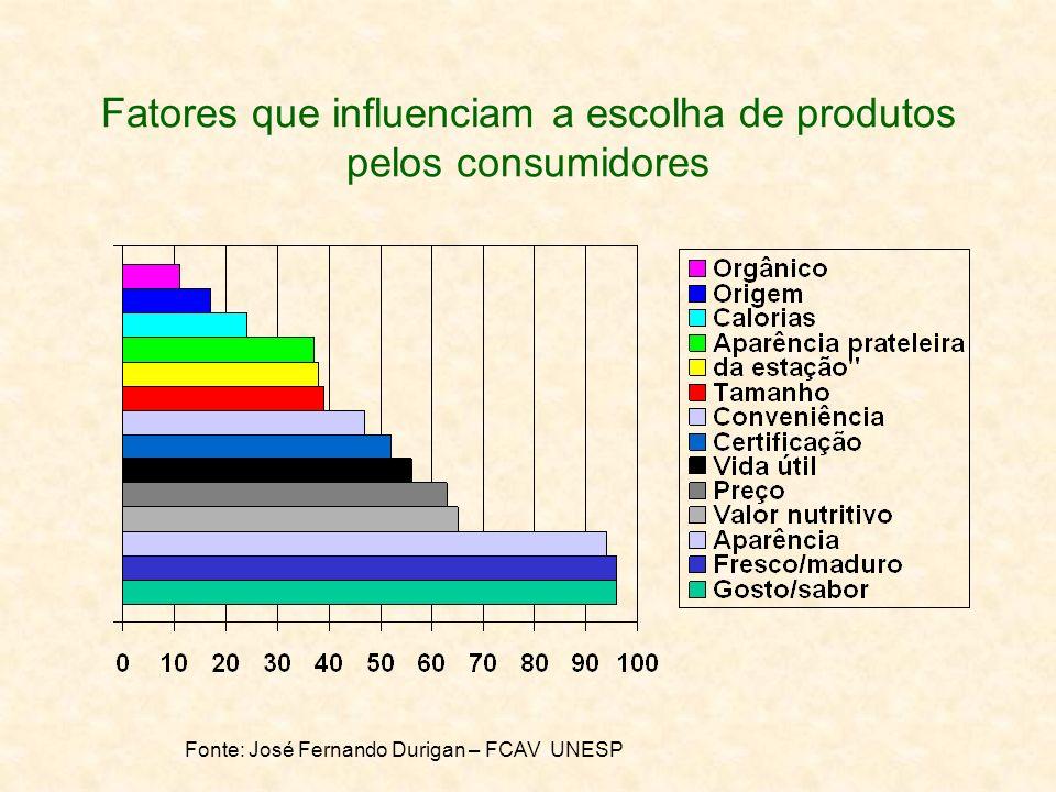 Fatores que influenciam a escolha de produtos pelos consumidores