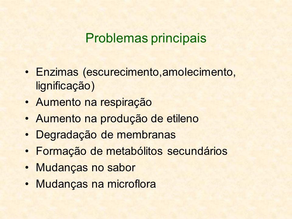 Problemas principais Enzimas (escurecimento,amolecimento, lignificação) Aumento na respiração. Aumento na produção de etileno.