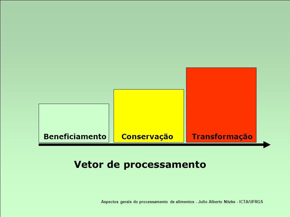 Vetor de processamento