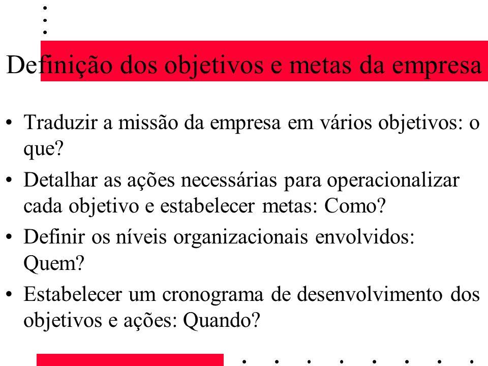 Definição dos objetivos e metas da empresa