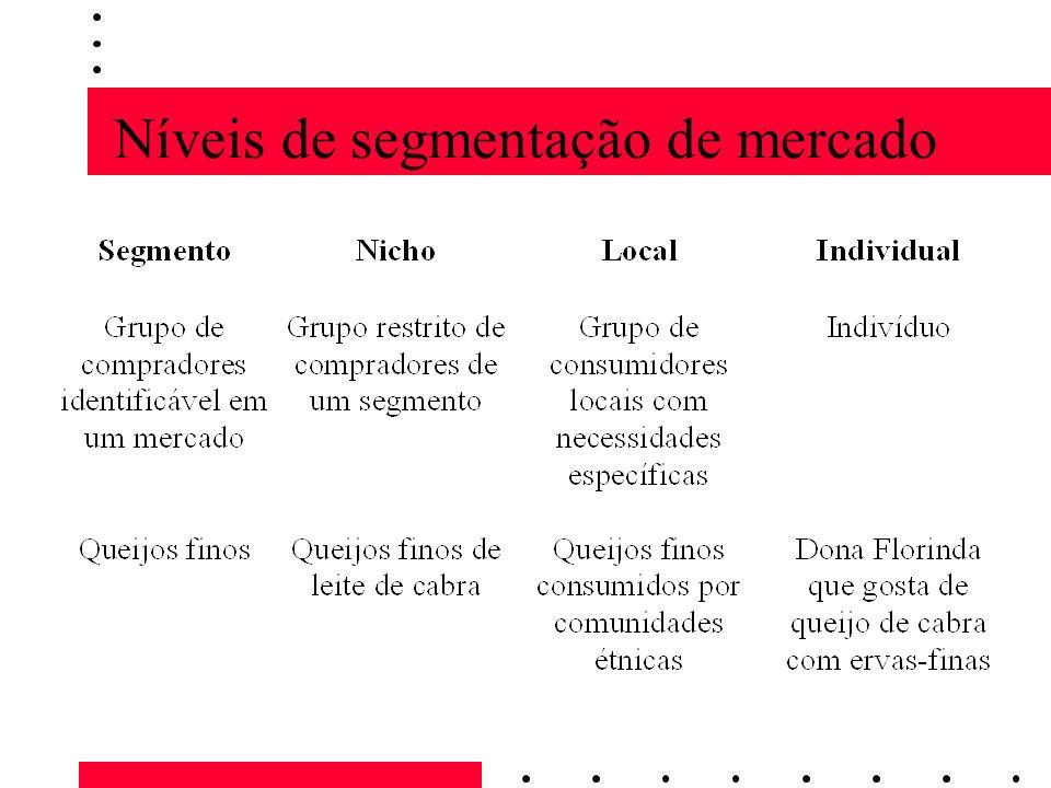 Níveis de segmentação de mercado