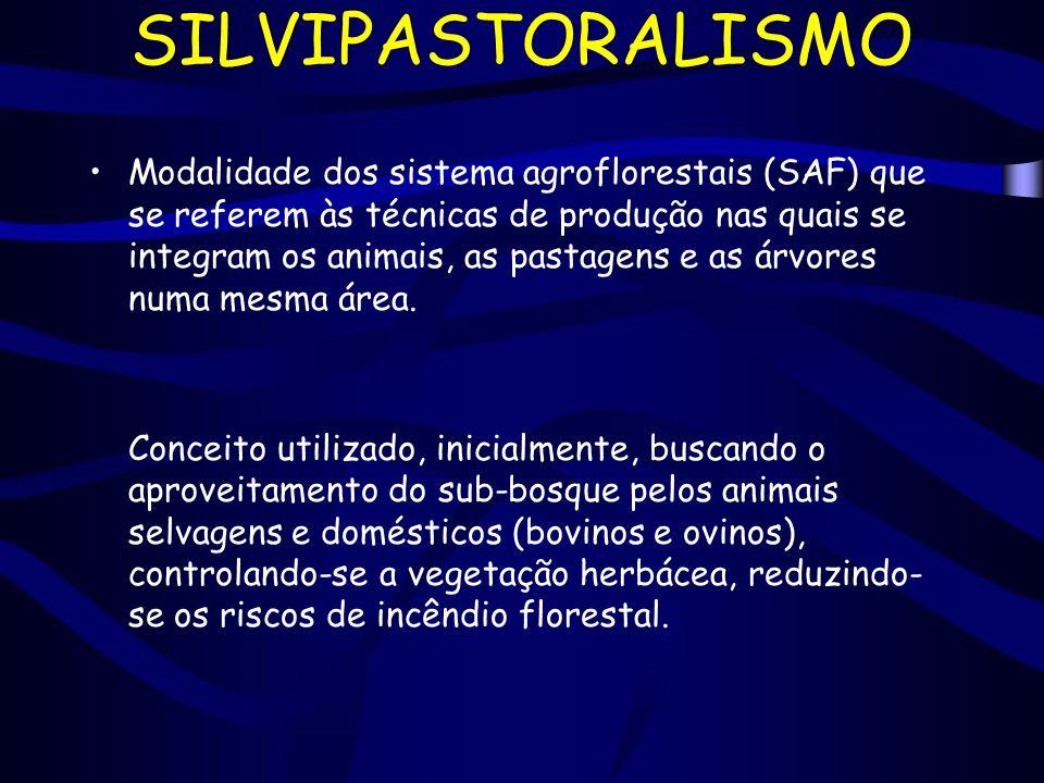SILVIPASTORALISMO