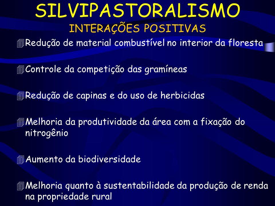 SILVIPASTORALISMO INTERAÇÕES POSITIVAS