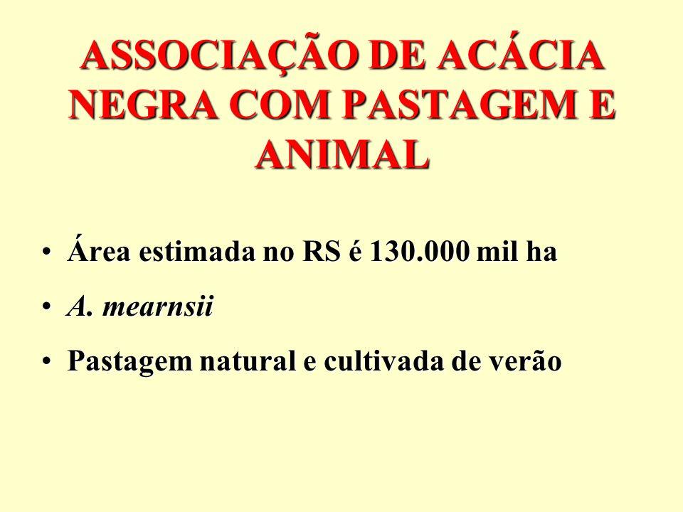 ASSOCIAÇÃO DE ACÁCIA NEGRA COM PASTAGEM E ANIMAL