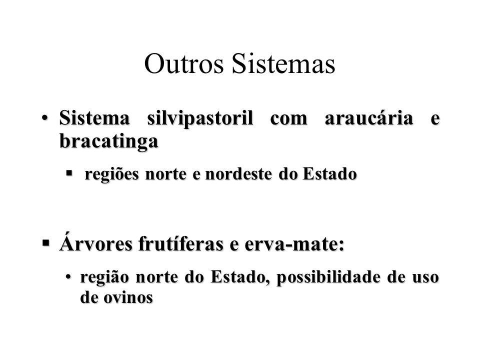 Outros Sistemas Sistema silvipastoril com araucária e bracatinga