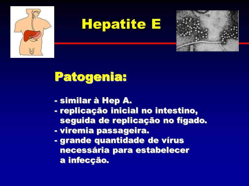 Hepatite E Patogenia: - similar à Hep A.