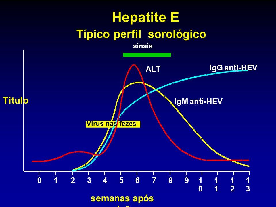 Hepatite E Típico perfil sorológico Título semanas após exposição ALT