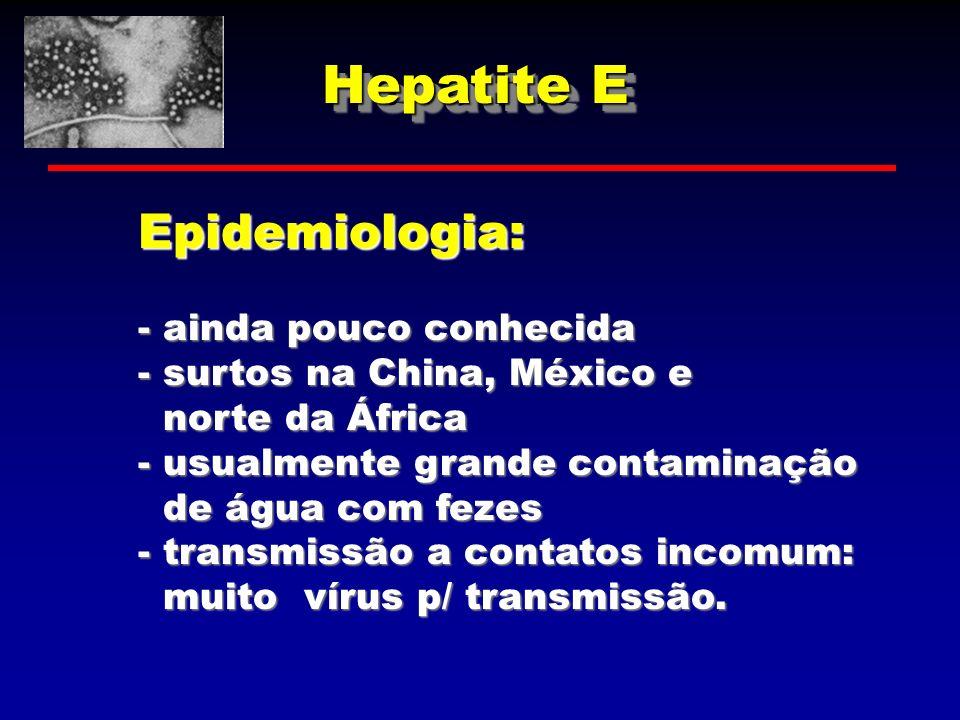 Hepatite E Epidemiologia: - ainda pouco conhecida