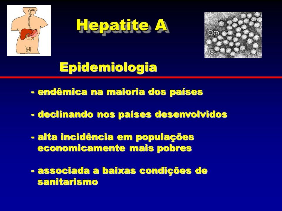 Hepatite A Epidemiologia endêmica na maioria dos países