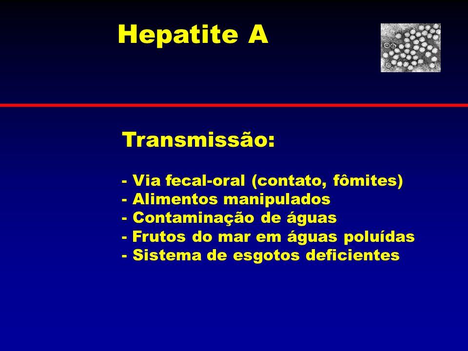Hepatite A Transmissão: Via fecal-oral (contato, fômites)