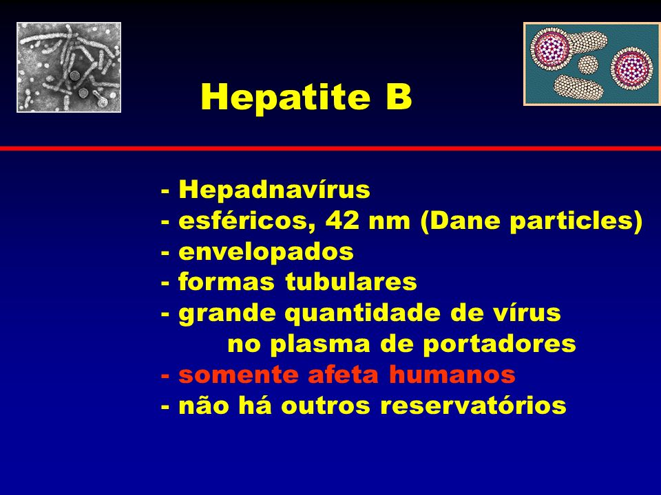 Hepatite B - Hepadnavírus esféricos, 42 nm (Dane particles)