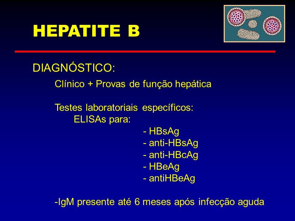HEPATITE B DIAGNÓSTICO: Clínico + Provas de função hepática