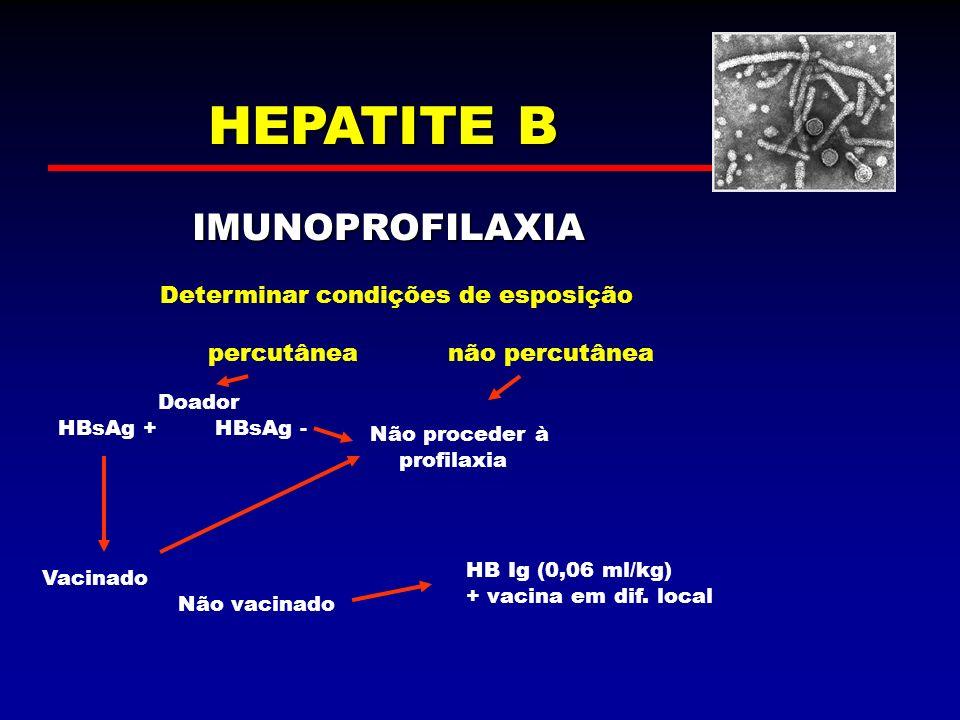 HEPATITE B IMUNOPROFILAXIA Determinar condições de esposição