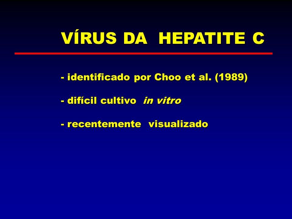 VÍRUS DA HEPATITE C - identificado por Choo et al. (1989)