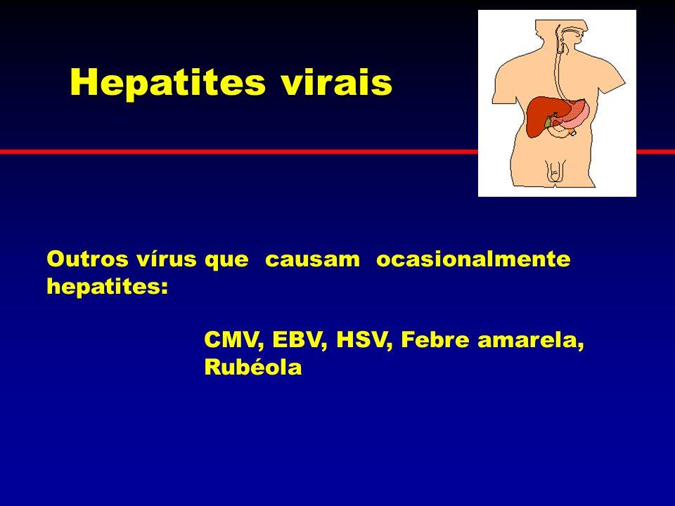 Hepatites virais Outros vírus que causam ocasionalmente hepatites: