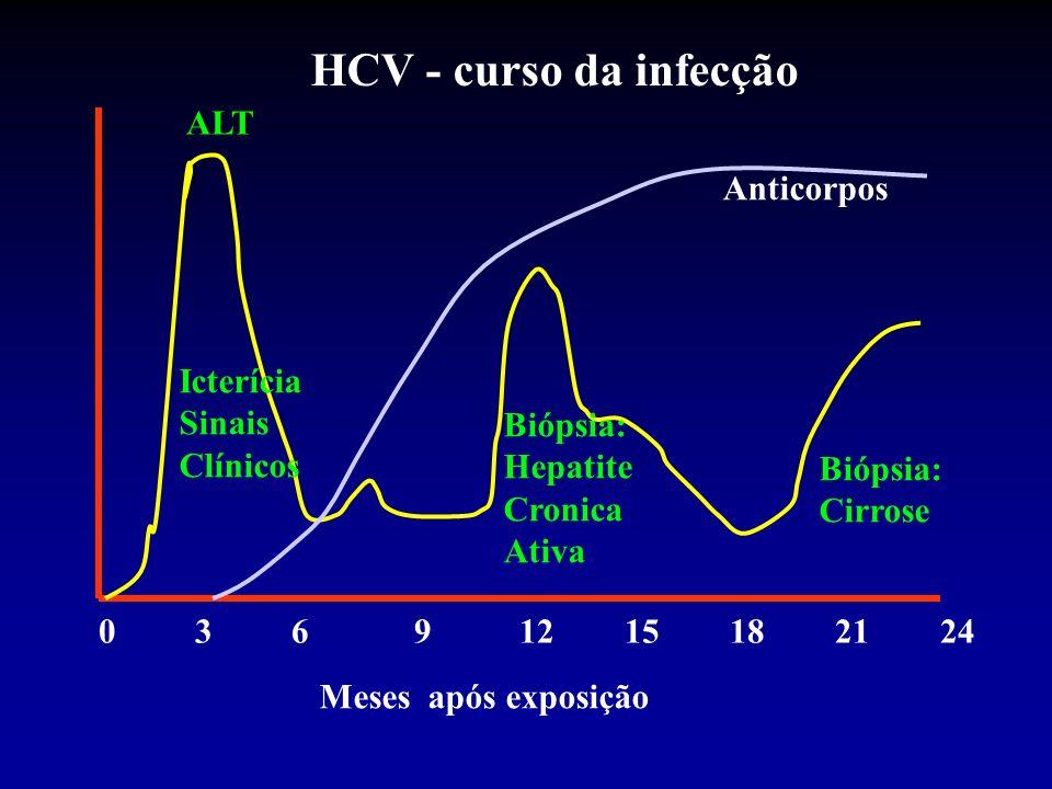 HCV - curso da infecção ALT Anticorpos Icterícia Sinais Clínicos