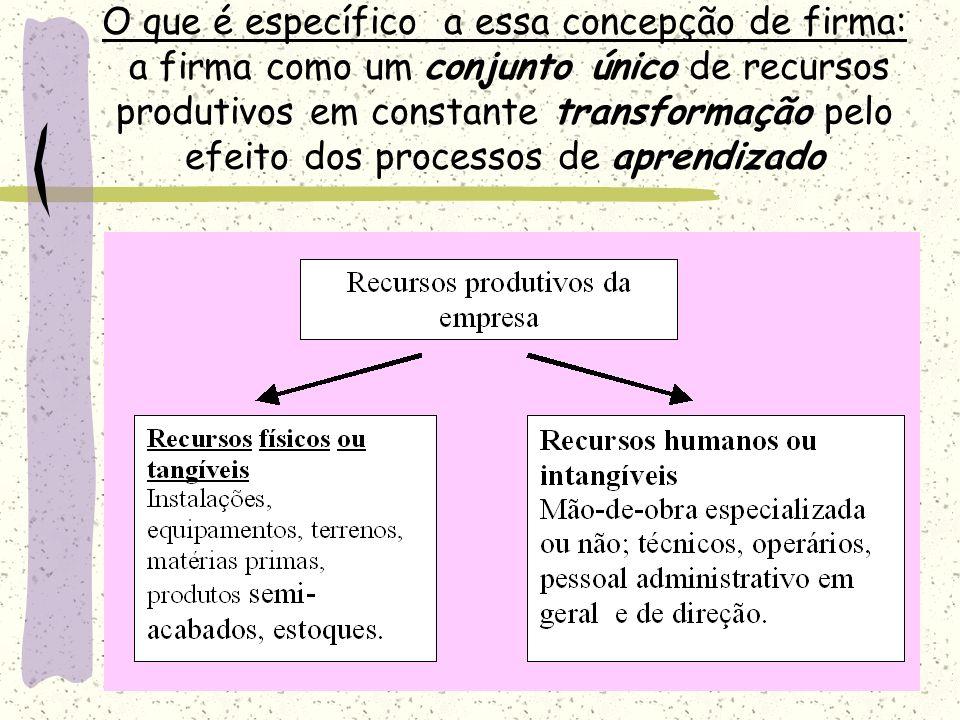 O que é específico a essa concepção de firma: a firma como um conjunto único de recursos produtivos em constante transformação pelo efeito dos processos de aprendizado