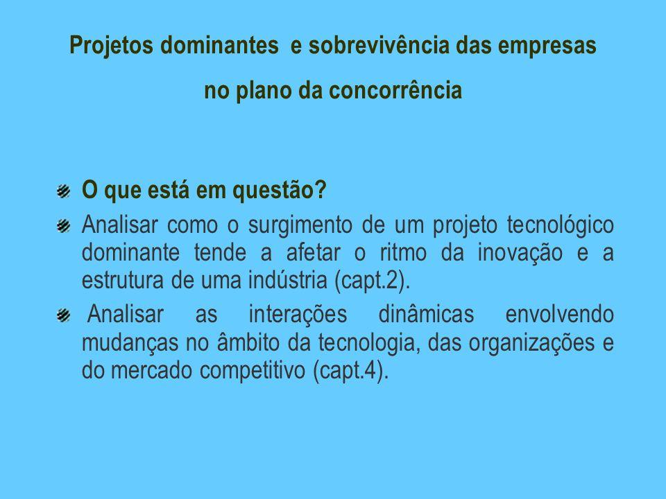 Projetos dominantes e sobrevivência das empresas no plano da concorrência