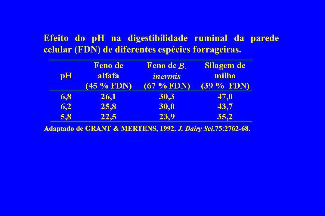Efeito do pH na digestibilidade ruminal da parede celular (FDN) de diferentes espécies forrageiras.