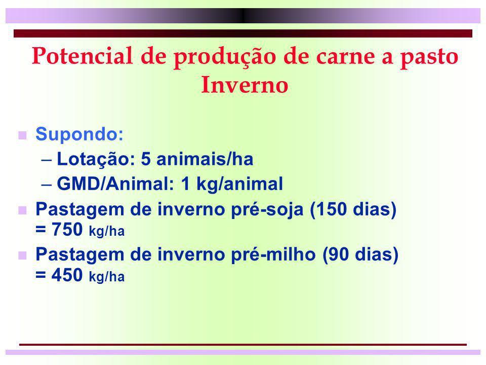 Potencial de produção de carne a pasto Inverno