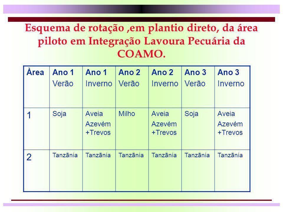 Esquema de rotação ,em plantio direto, da área piloto em Integração Lavoura Pecuária da COAMO.