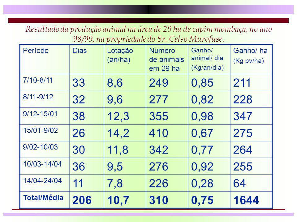 Resultado da produção animal na área de 29 ha de capim mombaça, no ano 98/99, na propriedade do Sr. Celso Murofuse.