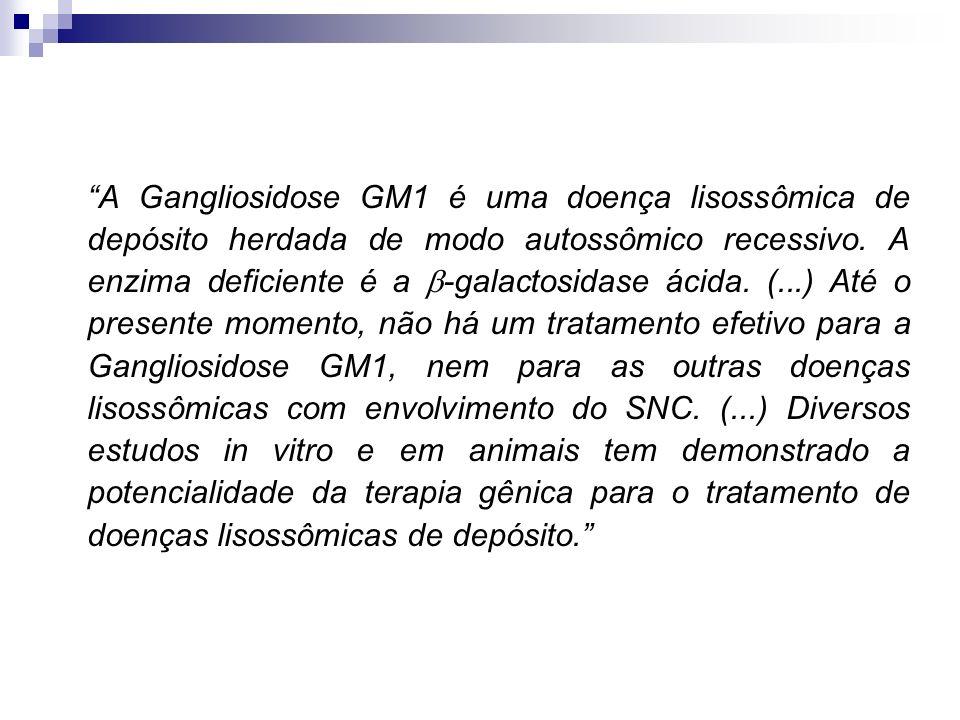A Gangliosidose GM1 é uma doença lisossômica de depósito herdada de modo autossômico recessivo.