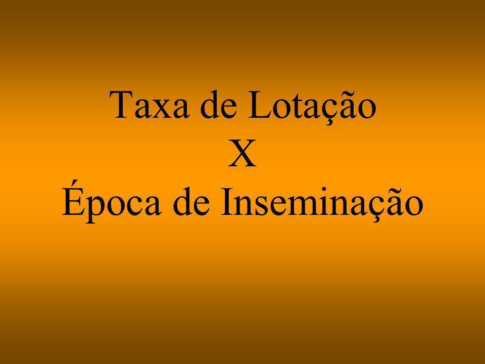 Taxa de Lotação X Época de Inseminação