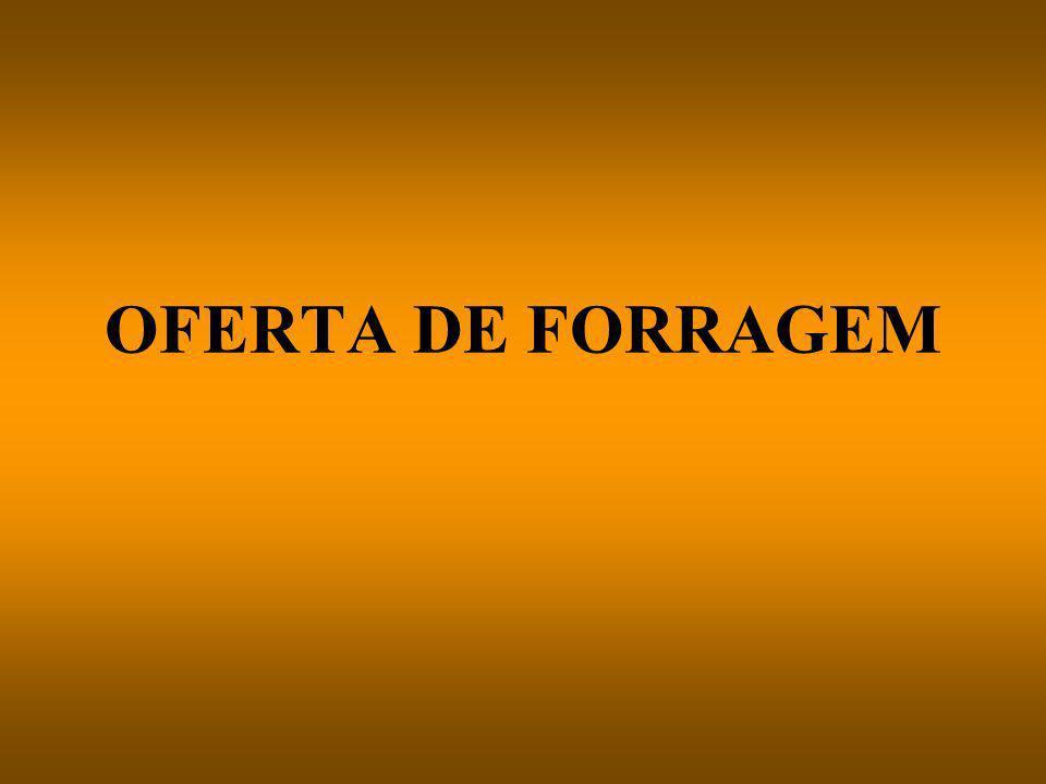 OFERTA DE FORRAGEM