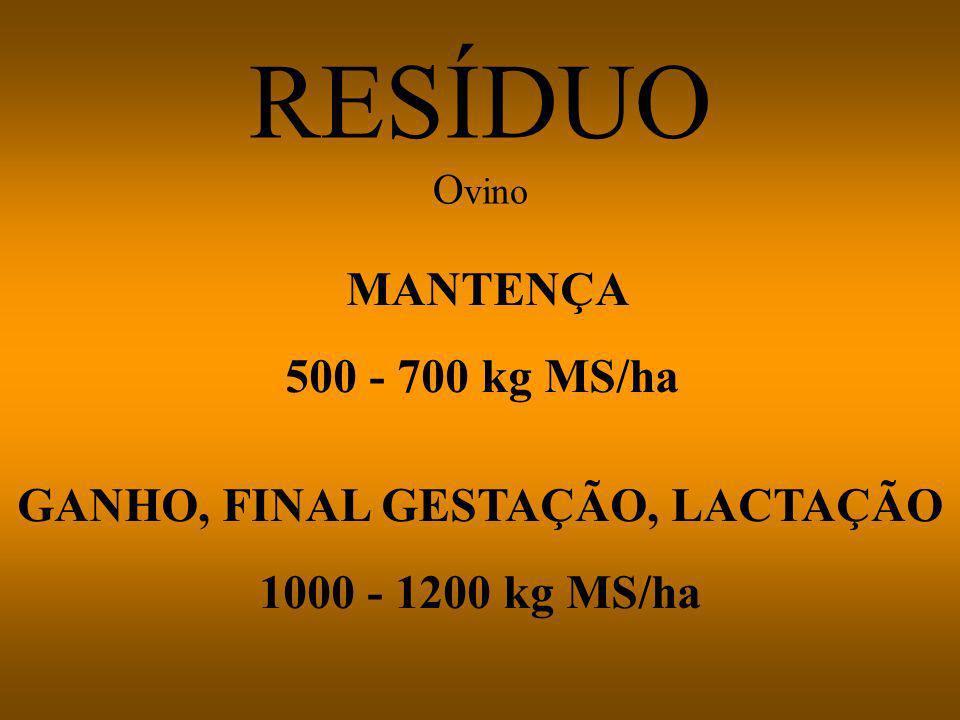 GANHO, FINAL GESTAÇÃO, LACTAÇÃO