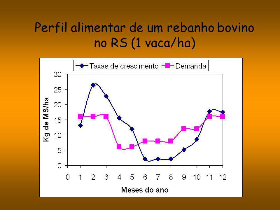 Perfil alimentar de um rebanho bovino no RS (1 vaca/ha)
