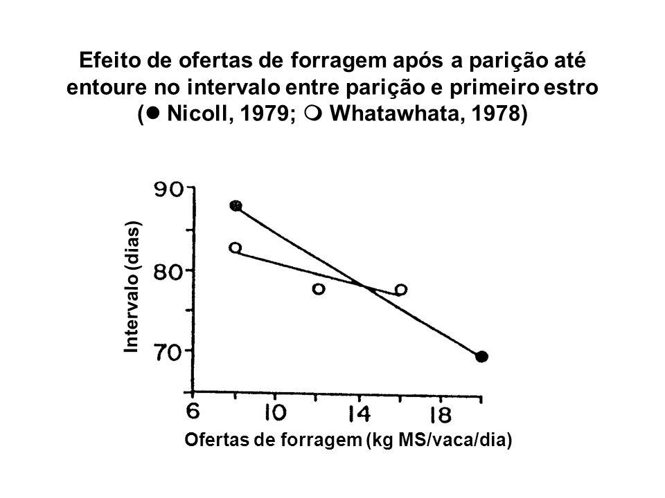 Efeito de ofertas de forragem após a parição até entoure no intervalo entre parição e primeiro estro ( Nicoll, 1979;  Whatawhata, 1978)
