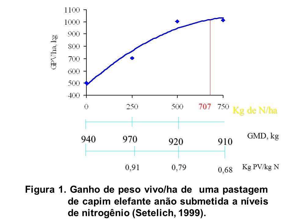 707 Kg de N/ha. 920. 940. 970. GMD, kg. 0,79. 0,68. Kg PV/kg N. 910. 0,91.