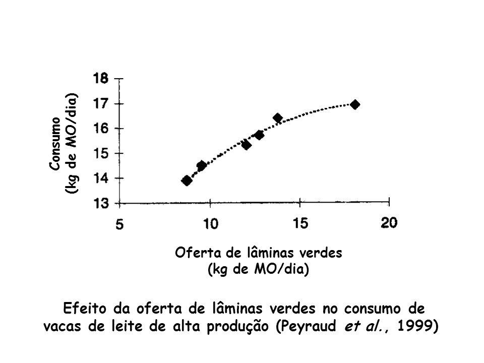 Efeito da oferta de lâminas verdes no consumo de