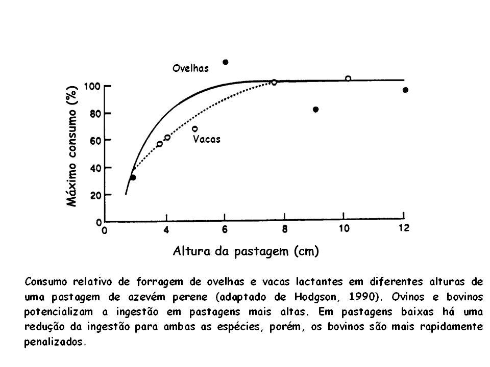 Altura da pastagem (cm) Máximo consumo (%)