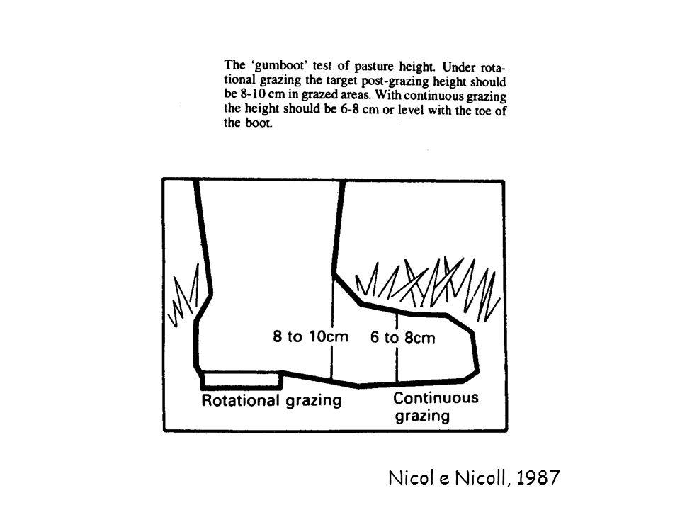 Nicol e Nicoll, 1987