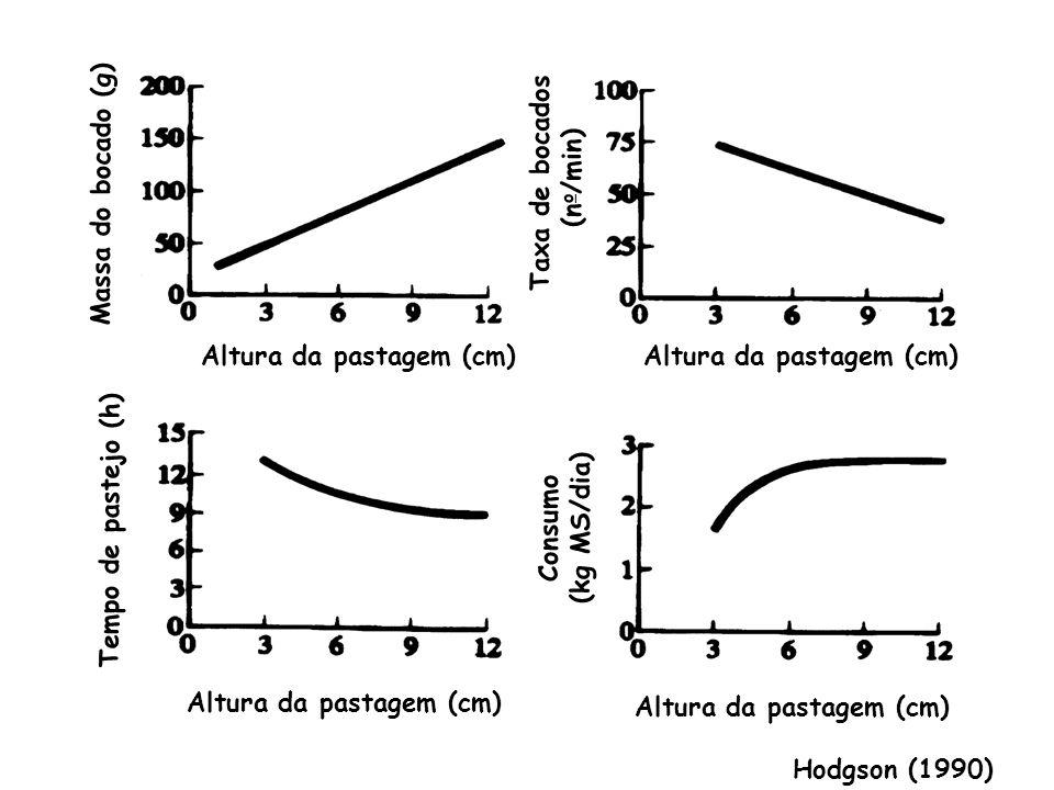Taxa de bocados (no/min) Massa do bocado (g) Altura da pastagem (cm) Altura da pastagem (cm) (kg MS/dia)