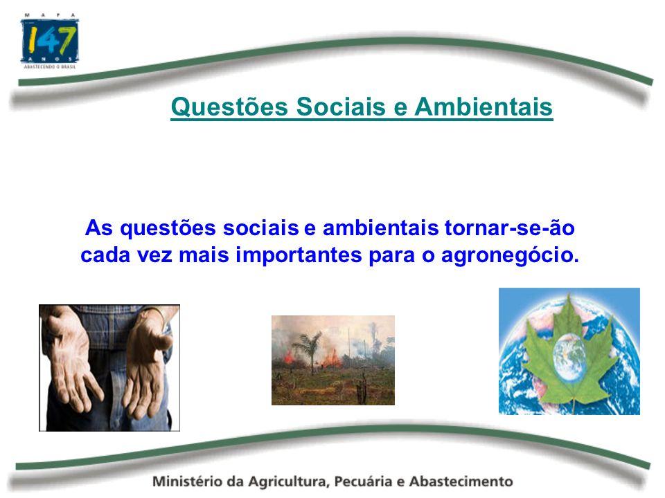 Questões Sociais e Ambientais