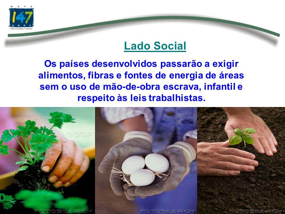Lado Social