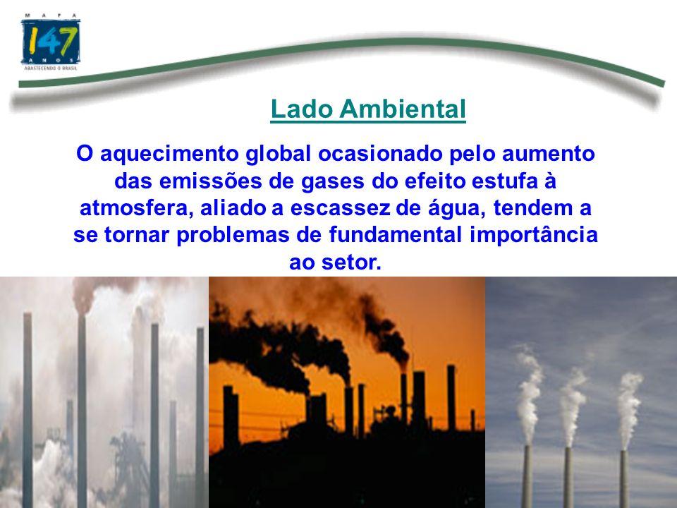 Lado Ambiental