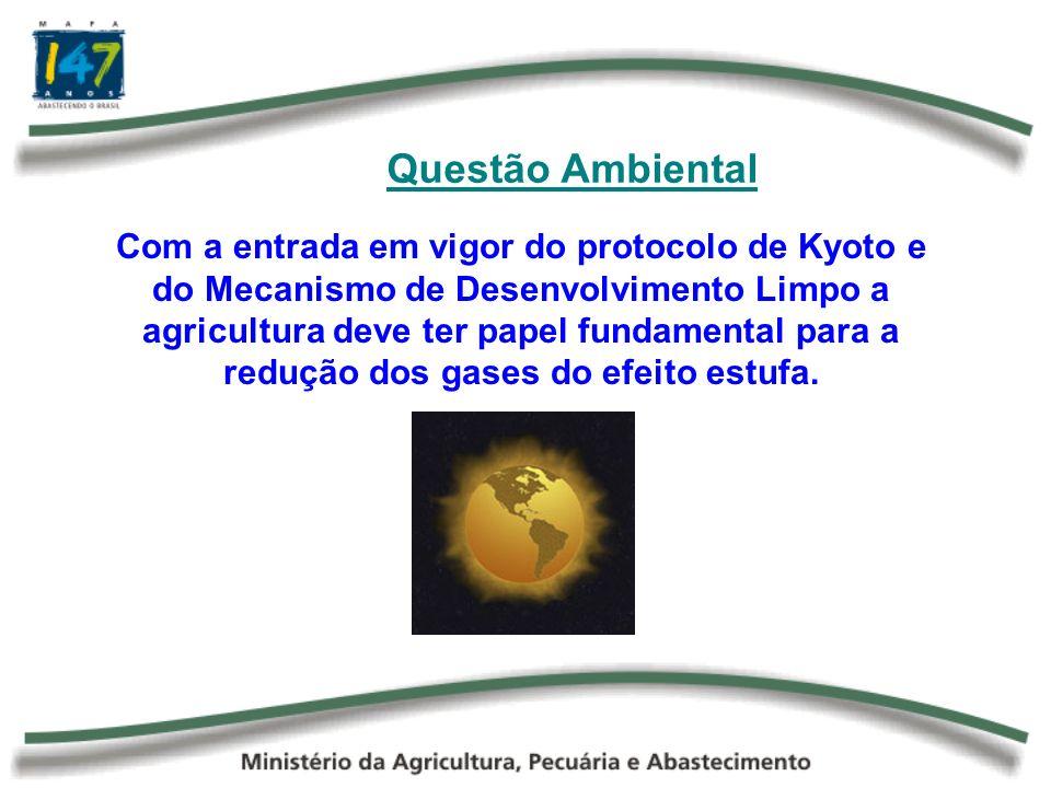 Questão Ambiental