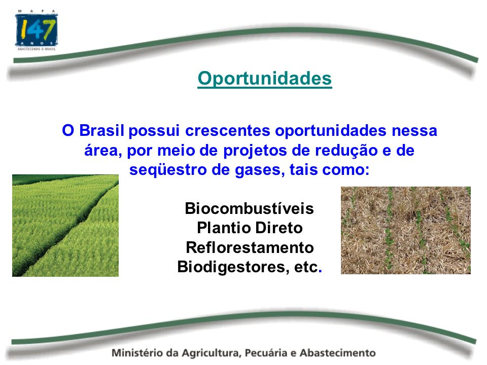 Oportunidades O Brasil possui crescentes oportunidades nessa área, por meio de projetos de redução e de seqüestro de gases, tais como: