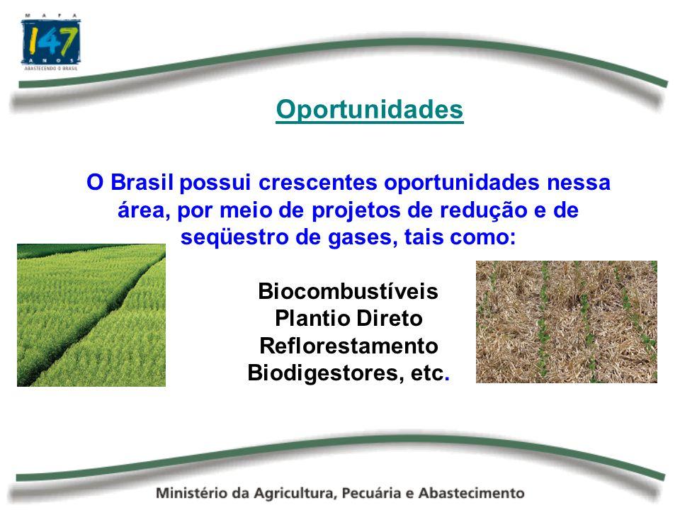 OportunidadesO Brasil possui crescentes oportunidades nessa área, por meio de projetos de redução e de seqüestro de gases, tais como:
