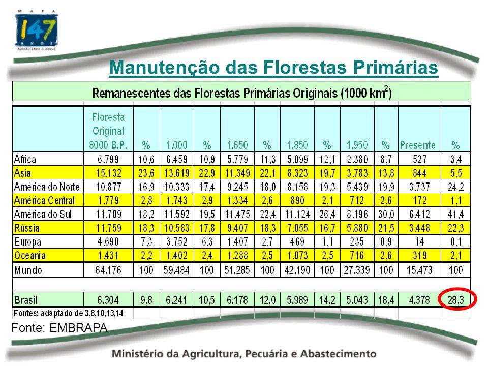 Manutenção das Florestas Primárias