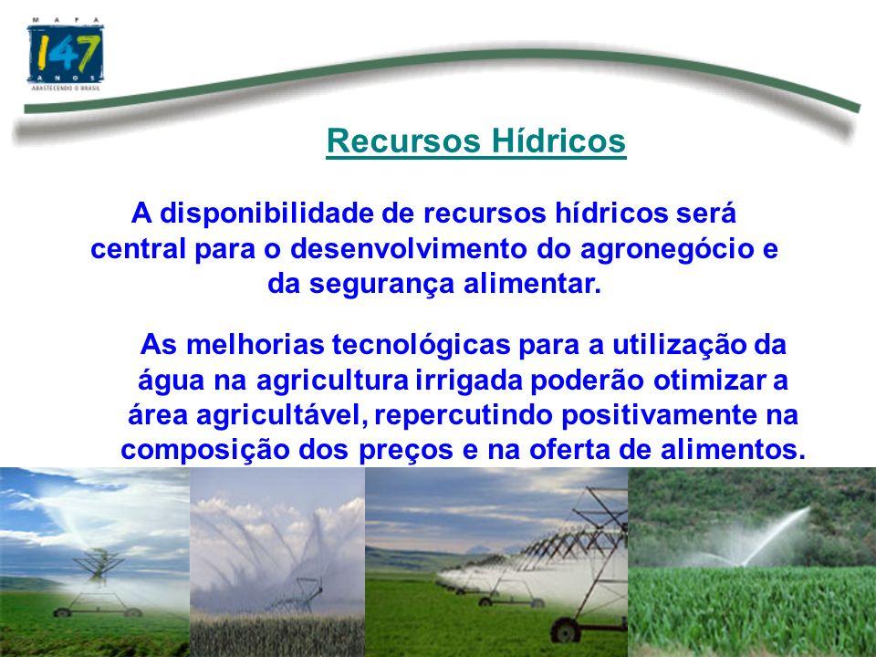 Recursos HídricosA disponibilidade de recursos hídricos será central para o desenvolvimento do agronegócio e da segurança alimentar.