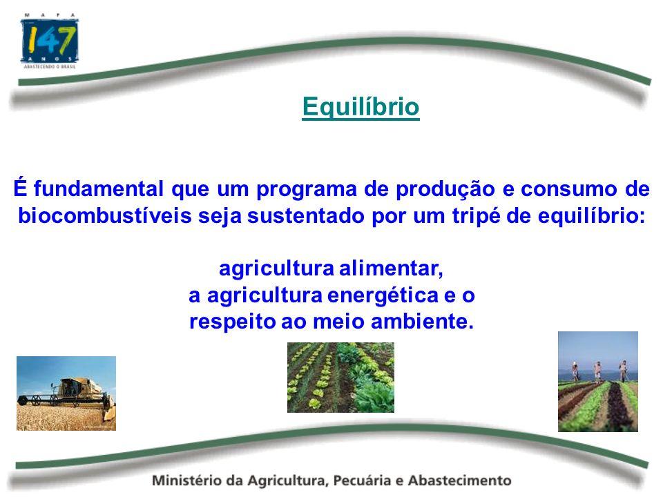 Equilíbrio É fundamental que um programa de produção e consumo de biocombustíveis seja sustentado por um tripé de equilíbrio:
